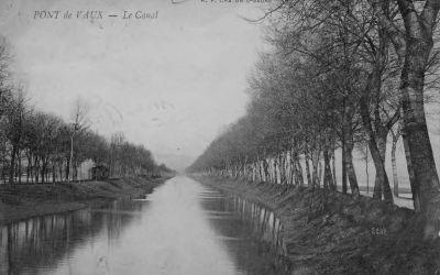 Le canal de Pont-de-Vaux arboré